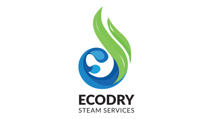 ecodry steam canada pagina web corporativa en colombia carritos de compra